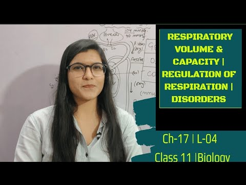 Ch-17 | L-04 Respiratory Volume & Capacity | Regulation Of Respiration | Disorders | Class 11