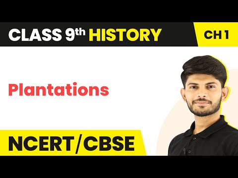 Plantations - Forest society and colonialism   Class 9 History