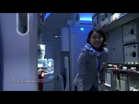 ANA 787 Dreamliner Economy Class Flight Experience Narita - Seattle