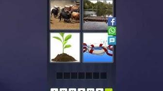 4 Bilder 1 Wort Lösung [Bullen, See, Pflanze, Rettungsring]
