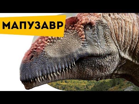 Интересные факты для детей про динозавров Мапузавр   Семен Ученый