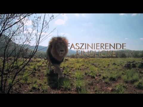 African Safari 3D - Trailer (Ben Stassen)