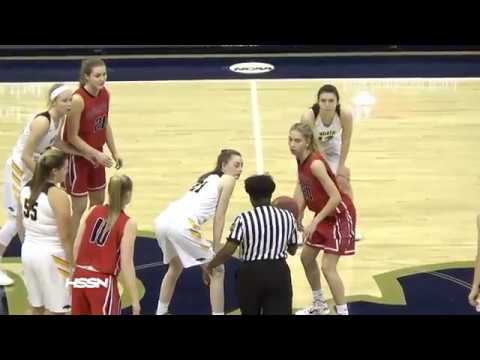 WPIAL Class 6A Girls Basketball Championship - North Allegheny vs  Peters Township
