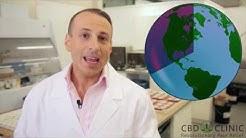 CBD Clinic Video