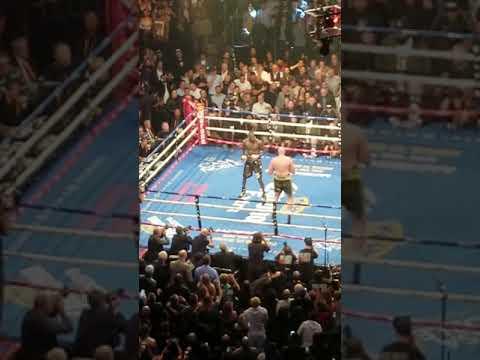 Download Fury vs Wilder round 12