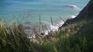 Гурзуф, дикий пляж  - об отдыхе в Большой Ялте(Всё видео ПРО Гурзуф: http://gurzuf.pro., 2013-05-28T05:44:12.000Z)