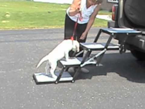 Pet Loader Training Video