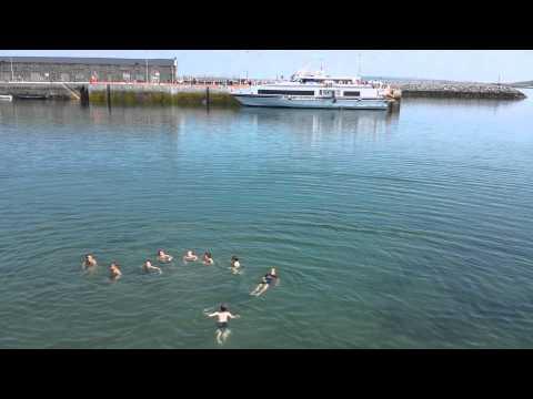 видео: Урок по плаванию на открытой воде