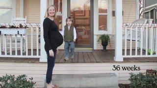 Pregnancy Time Lapse (Parker)