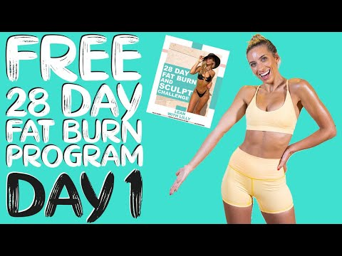 DAY 1 | FREE 28 DAY WORKOUT CHALLENGE | Total Body Fat Burn HIIT | Timer & Modifications Included