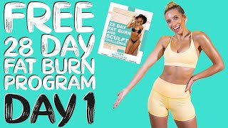 Welcome to your 28 day fat burn & sculpt challenge. those of you who have completed workout challenges with me before, won't be shocked hear that i wanted...