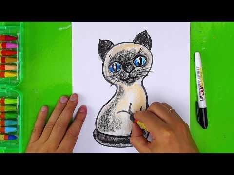 Как нарисовать ТАЙСКОГО КОТИКА для Кати