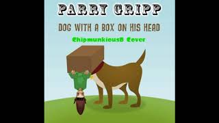 Watch Parry Gripp Dog With A Box On His Head video