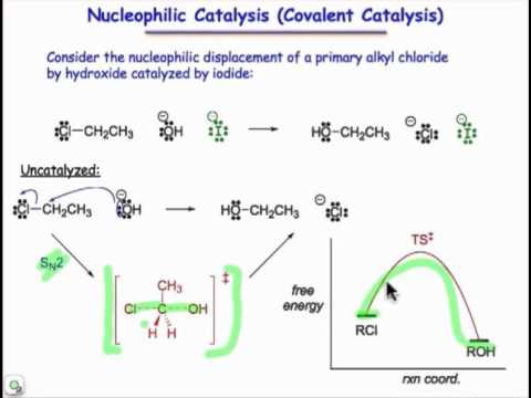 Nucleophilic Catalysis