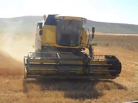 Biçerdöverle Buğday Biçimi
