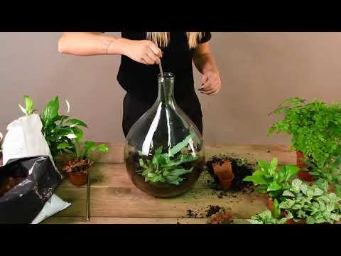 Plant Terrarium by Esschert Design
