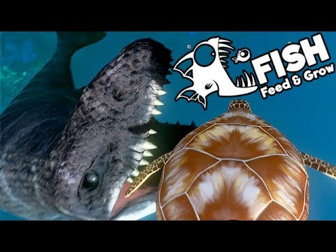 Feed and Grow Fish Gameplay German - Mosasaurus Vs. Sea Turtle