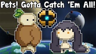 Starbound Guide Nightly - Pets!? Gotta Catch 'Em All! - GullofDoom