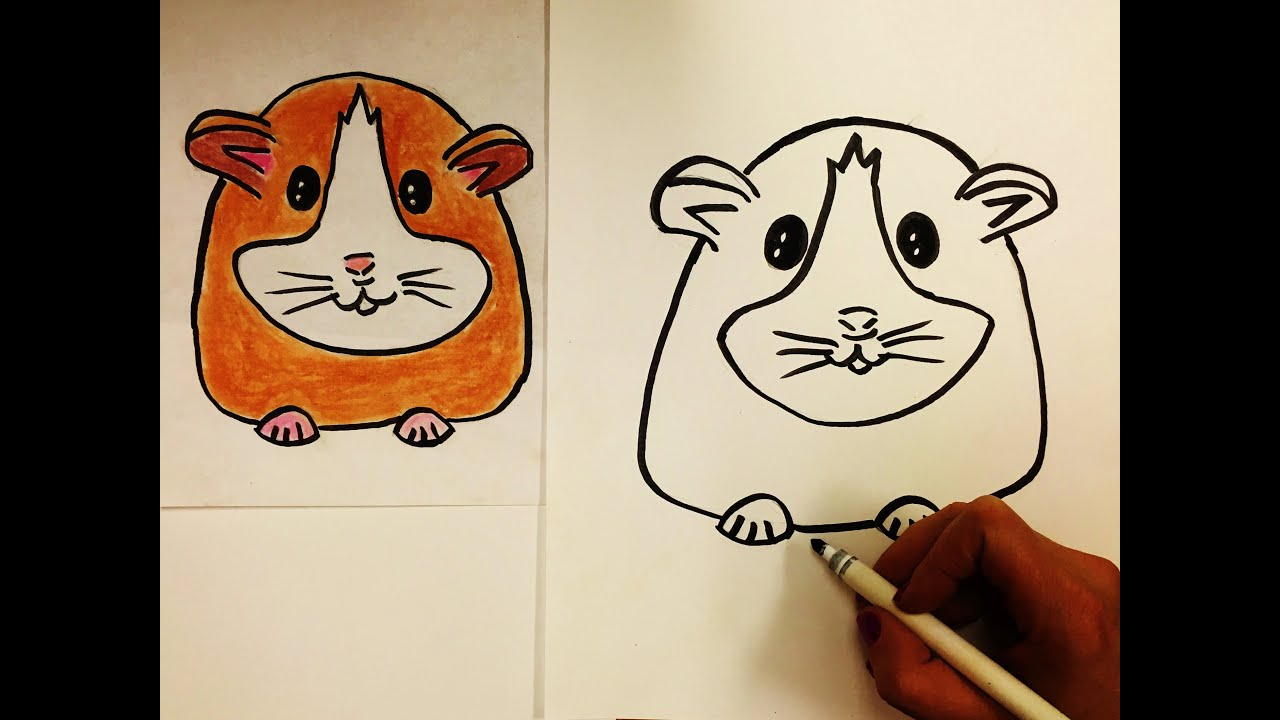 how to draw a hamster for kids youtube
