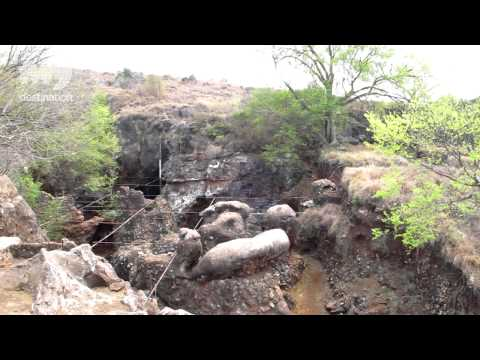 Swartkrans Cave - The Cradle of Humankind