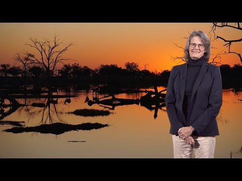 Elizabeth Hadly (Stanford) 1: Loss Of Biodiversity In A Human-dominated World