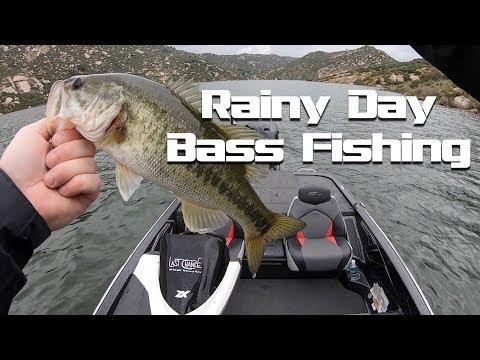 Rainy Day Bassin