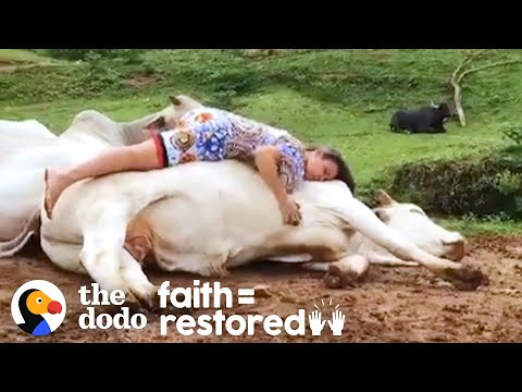 Rescued Animals Melt Into This Woman's Arms When She Sings To Them | The Dodo Faith = Restored