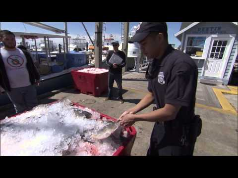 NOAA Law Enforcement Investigative Work