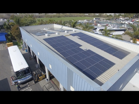 Customer Testimonials - Brighten Solar Co.