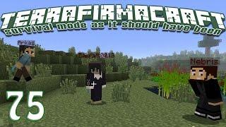 Terrafirmacraft Reloaded - E75 - Ugh Iron (Minecraft)