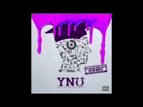 Yung Nation - Fraud Hoe S&C By OG Ron C