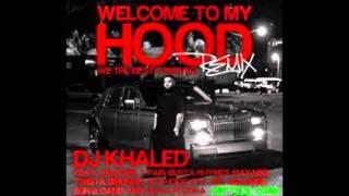 DJ Khaled Ft  Ludacris, T Pain, Busta Rhymes, Mavado, Twista, Birdman, Ace Hood, Fat Joe, Bun B, Game & Waka Flocka Flame – Welcome To My Hood Official Remix