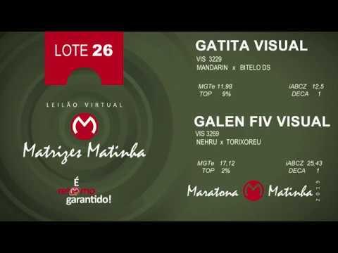LOTE 26 Matrizes Matinha 2019