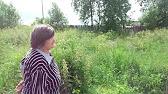 Зил-5301 «бычок» — российский малотоннажный грузовой автомобиль производства завода имени лихачева. Серийно выпускался в 1995—2014 годах. Первые прототипы появились в 1991 году. Содержание. [скрыть]. 1 история семейства «бычок». 1. 1 1990-е; 1. 2 2000-е; 1. 3 2010-е. 2 особенности; 3.