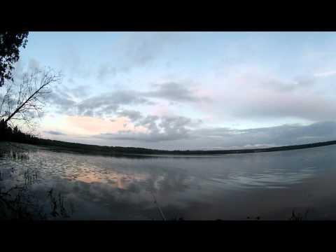ловля леща с берега на поплавочную удочку