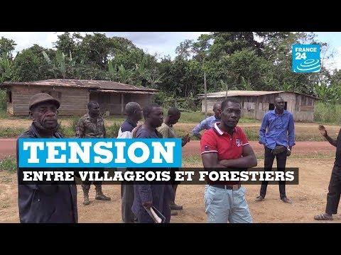 Gabon, tensions entre villageois et forestiers