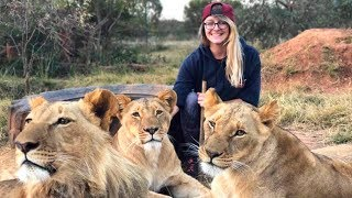 A Day in the Life: Living With Big Cats