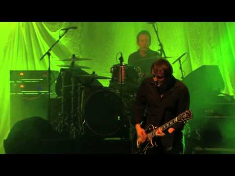 SUEDE - ANIMAL NITRATE - (LIVE IN PARIS 2013)