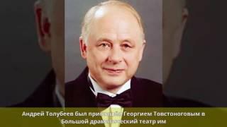 Толубеев, Андрей Юрьевич - Биография