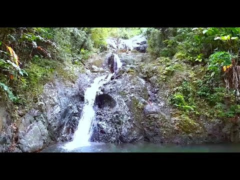 Best Places to Visit in Trinidad and Tobago