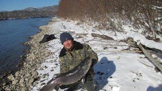 Рыбалка на Дальнем Востоке(Я занимаюсь рыболовством с тех лет как себя помню.Рыболов в четвёртом поколении .Все традиции и секреты..., 2015-01-28T03:51:45.000Z)
