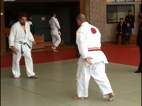 Fast Judo Fight #2