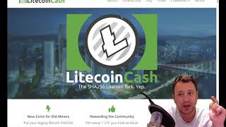 Crypto News- Litecoin Cash fork is coming, protect yourself and even if it is a scam you can