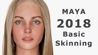 Maya 2018: Basic Skinning. Skin Weight (на русском)