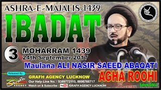 Maulana Ali Nasir Saeed Abaqati Agha Roohi | 3rd Majlis Ashra 1439 2017 | Afzal Mahal Lucknow India
