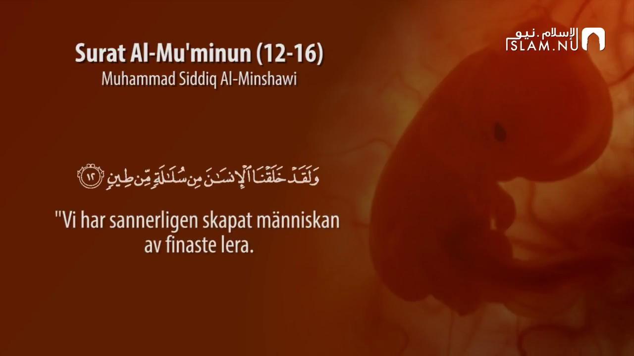 Surah Al-Muminun (12-16) - Muhammad Siddiq Al-Minshawi