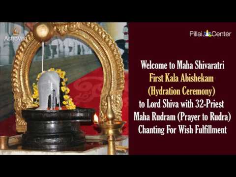 Maha Shivaratri Abishekam and Homa LIVE on Feb. 24, 2017 at 4:30 am PT / 7:30 am ET / 6:00 pm