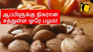 Dried apricots health benefits | Apricot fruit benefits in Tamil