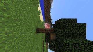 Sideways Minecraft
