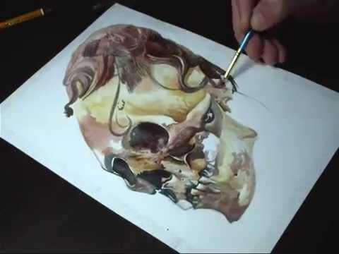 Watercolor Skull : Daniel Moreno Garcia
